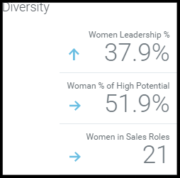 Blog advanced reporting dashboards diversity-201710-edited.png