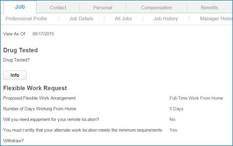 Custom_Objects_Flexible_Work